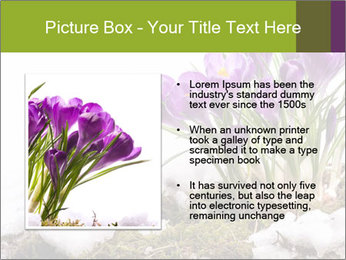 0000072211 PowerPoint Templates - Slide 13