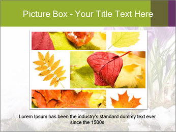 0000072211 PowerPoint Templates - Slide 15