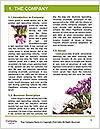 0000072211 Word Template - Page 3