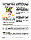 0000072211 Word Template - Page 4