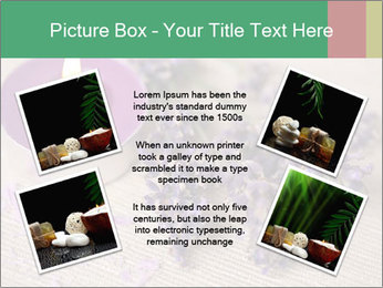 0000072213 PowerPoint Template - Slide 24