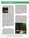 0000072213 Word Template - Page 3