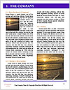 0000072214 Word Template - Page 3