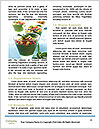 0000072228 Word Templates - Page 4