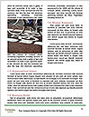 0000072240 Word Templates - Page 4