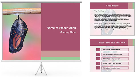 0000072241 PowerPoint Template