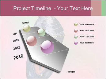 0000072241 PowerPoint Template - Slide 26