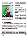 0000072245 Word Templates - Page 4