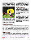 0000072246 Word Templates - Page 4