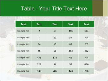 0000072247 PowerPoint Templates - Slide 55