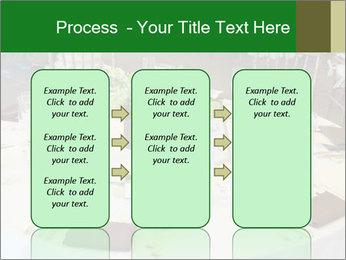 0000072247 PowerPoint Templates - Slide 86