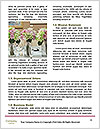 0000072248 Word Template - Page 4