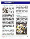 0000072249 Word Template - Page 3