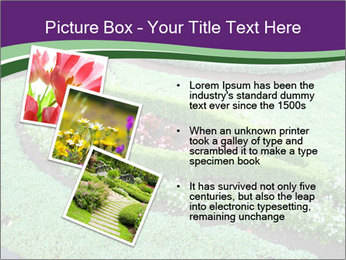 0000072250 PowerPoint Template - Slide 17