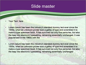 0000072250 PowerPoint Template - Slide 2