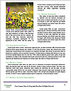 0000072250 Word Template - Page 4