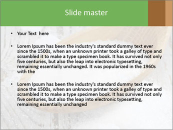 0000072251 PowerPoint Templates - Slide 2