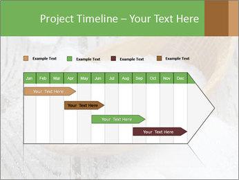 0000072251 PowerPoint Templates - Slide 25
