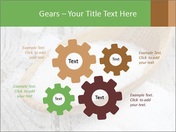 0000072251 PowerPoint Templates - Slide 47