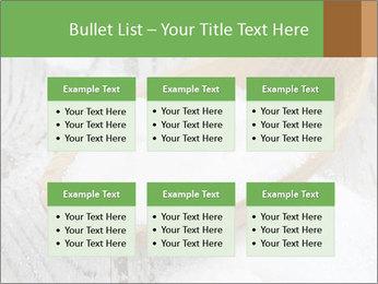 0000072251 PowerPoint Templates - Slide 56