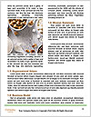 0000072251 Word Templates - Page 4
