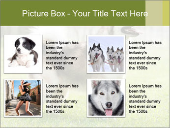 0000072253 PowerPoint Template - Slide 14