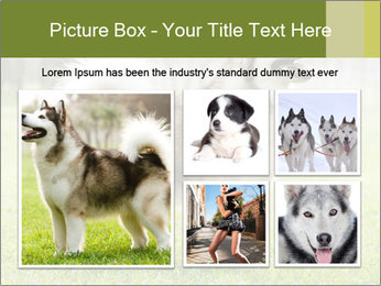 0000072253 PowerPoint Template - Slide 19