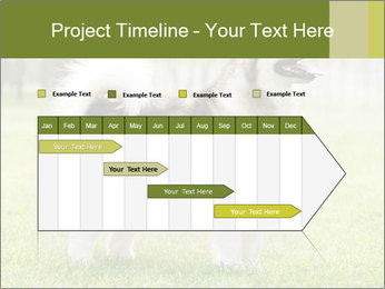 0000072253 PowerPoint Template - Slide 25