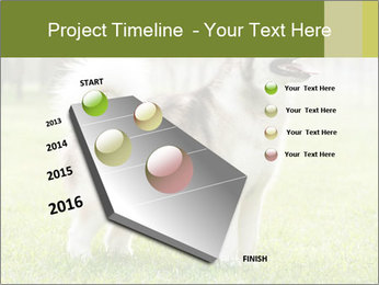 0000072253 PowerPoint Template - Slide 26