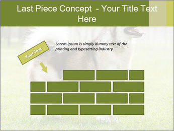 0000072253 PowerPoint Template - Slide 46