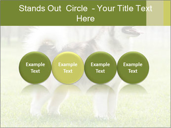 0000072253 PowerPoint Template - Slide 76