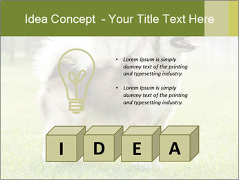 0000072253 PowerPoint Template - Slide 80