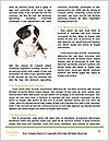 0000072253 Word Template - Page 4