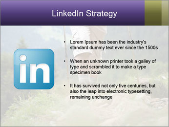 0000072254 PowerPoint Templates - Slide 12
