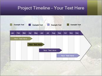 0000072254 PowerPoint Templates - Slide 25