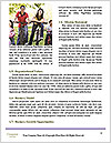 0000072255 Word Template - Page 4