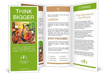 0000072256 Brochure Template