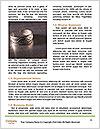 0000072256 Word Template - Page 4