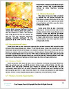 0000072268 Word Template - Page 4