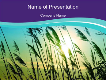 0000072274 PowerPoint Template