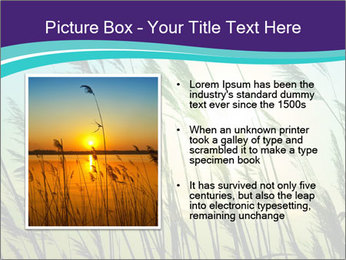 0000072274 PowerPoint Templates - Slide 13