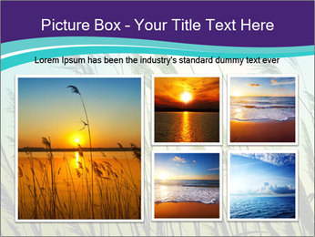 0000072274 PowerPoint Templates - Slide 19