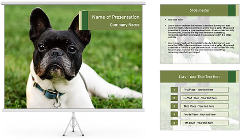 0000072275 PowerPoint Template