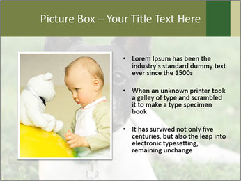 0000072275 PowerPoint Template - Slide 13