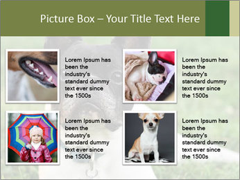 0000072275 PowerPoint Template - Slide 14