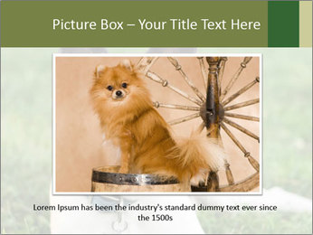 0000072275 PowerPoint Template - Slide 15