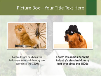 0000072275 PowerPoint Template - Slide 18