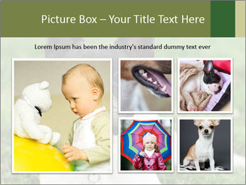 0000072275 PowerPoint Template - Slide 19
