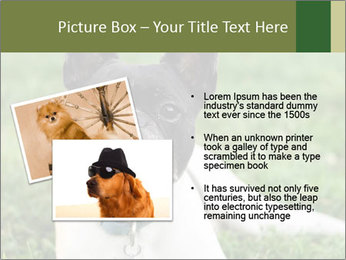 0000072275 PowerPoint Template - Slide 20