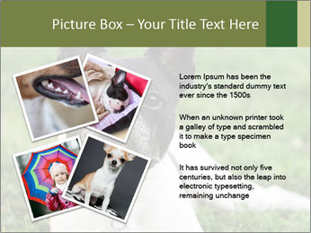 0000072275 PowerPoint Template - Slide 23
